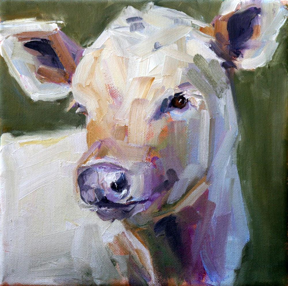 """""""baby charolais"""" original fine art by Carol Carmichael"""