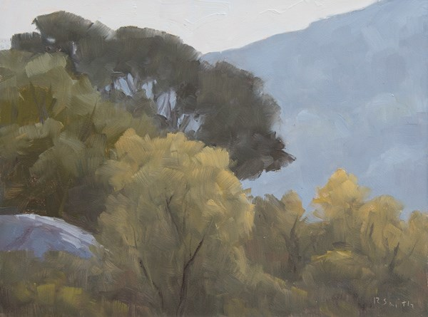 """San Pasqual Valley"" original fine art by Randall Smith"