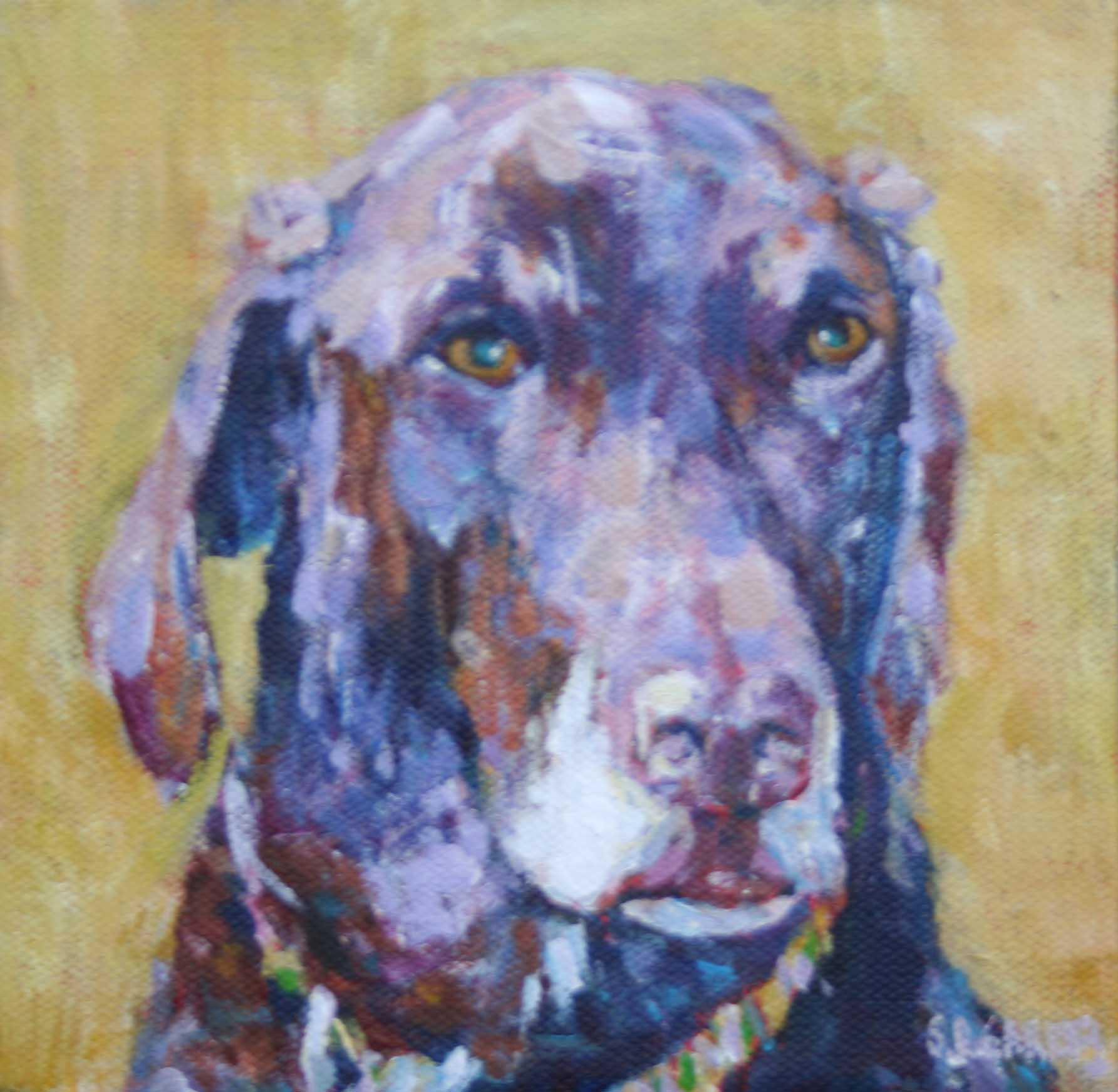 """Pelly"" original fine art by Shelley Garries"