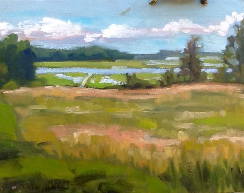 """Across the Great Marsh"" original fine art by Elizabeth Bish"