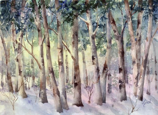 """""""Birch Woodland"""" original fine art by Sue Dion"""
