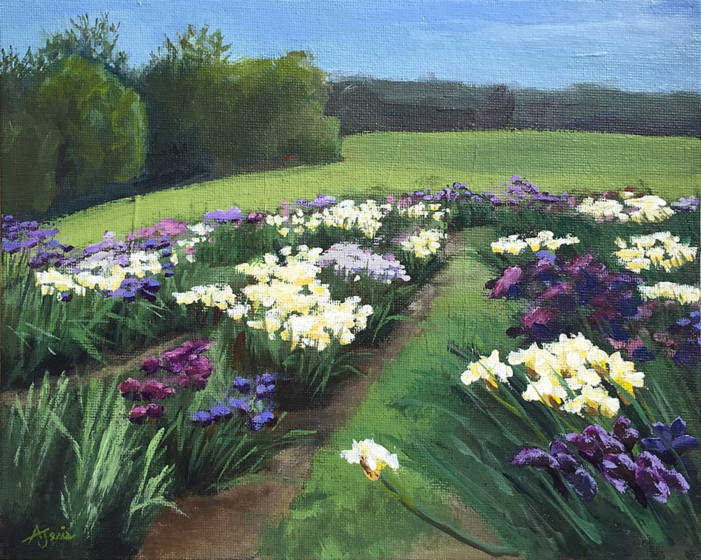 """Iris Farm"" original fine art by Andrea Jeris"