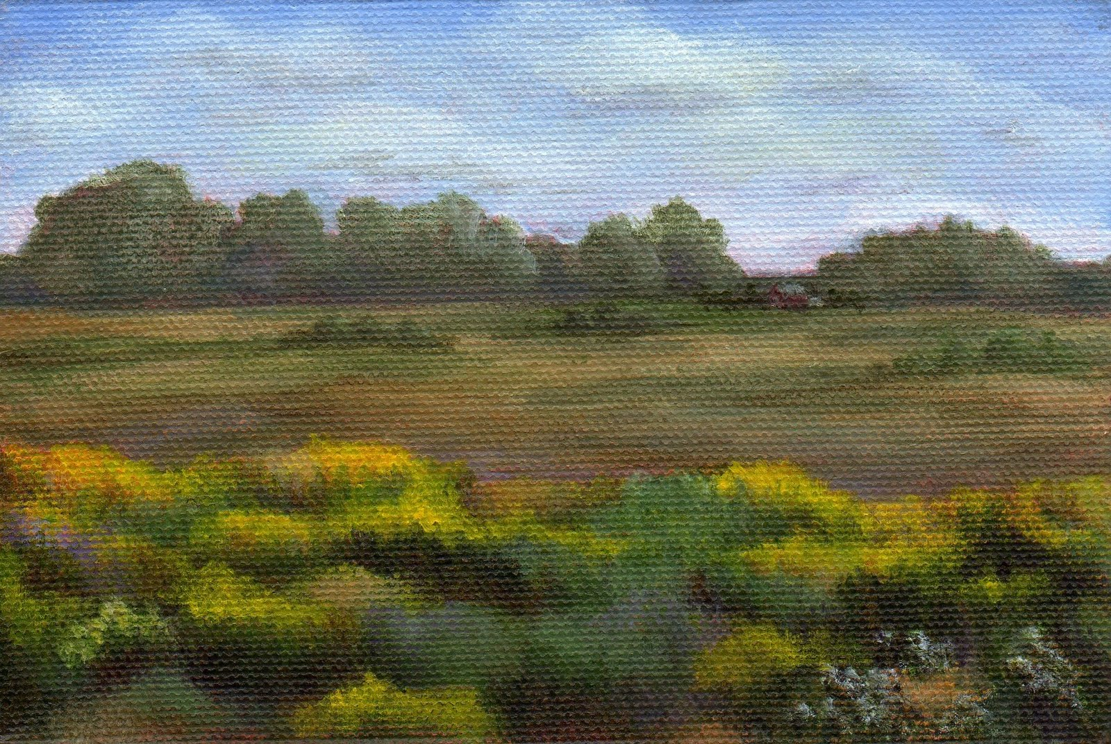 """Across the Field"" original fine art by Debbie Shirley"