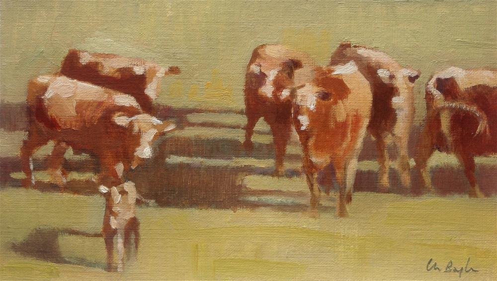 """Cows"" original fine art by Christine Bayle"