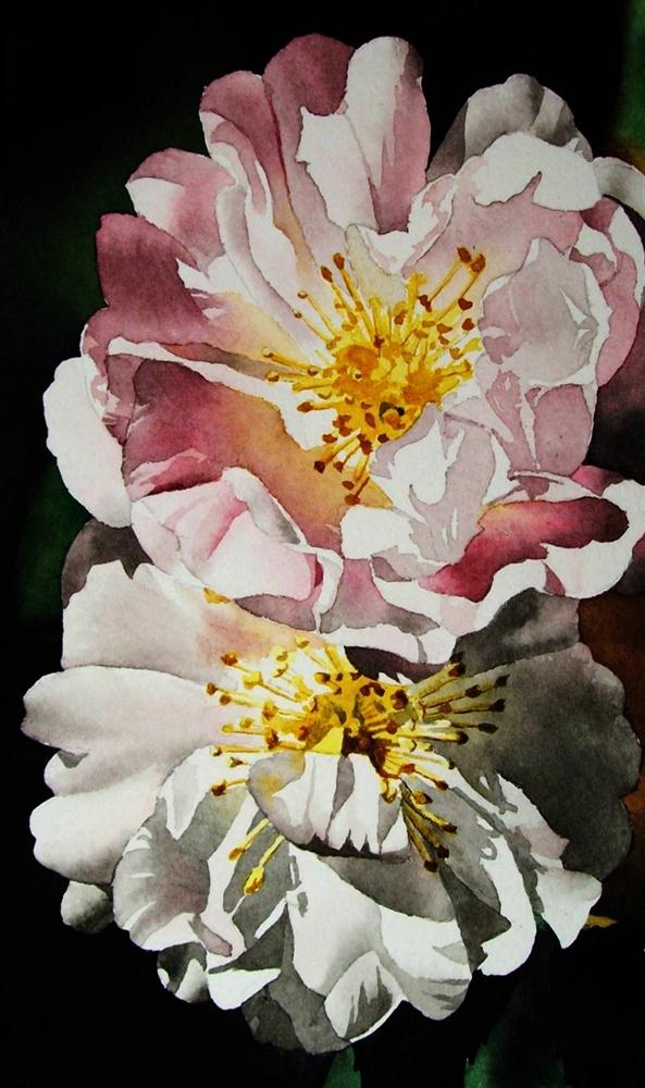 """Pink & White Roses"" original fine art by Jacqueline Gnott, whs"