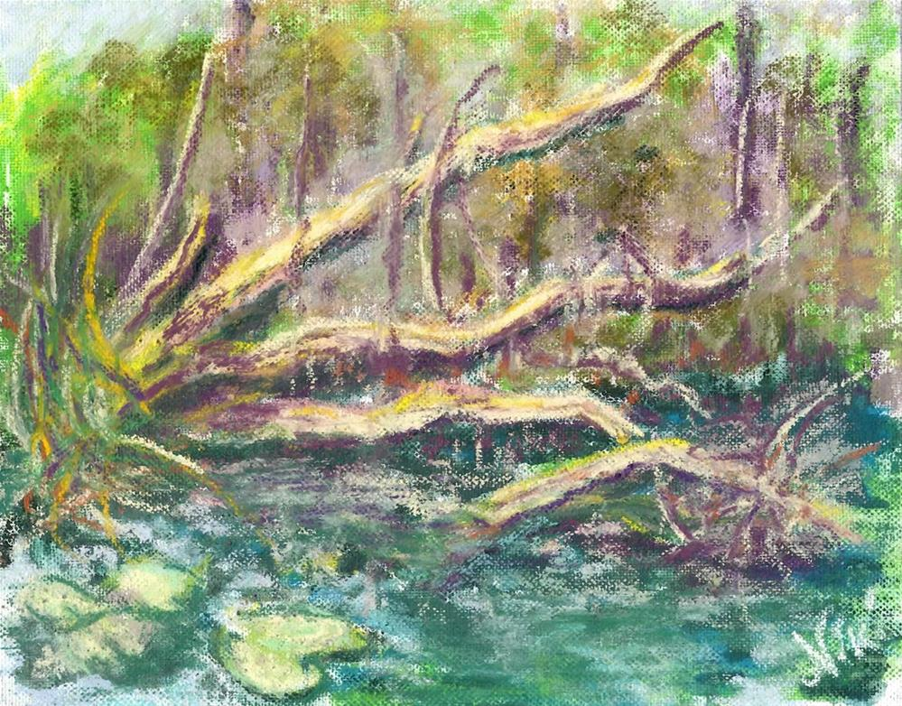 """Swamp Tree"" original fine art by Niki Hilsabeck"