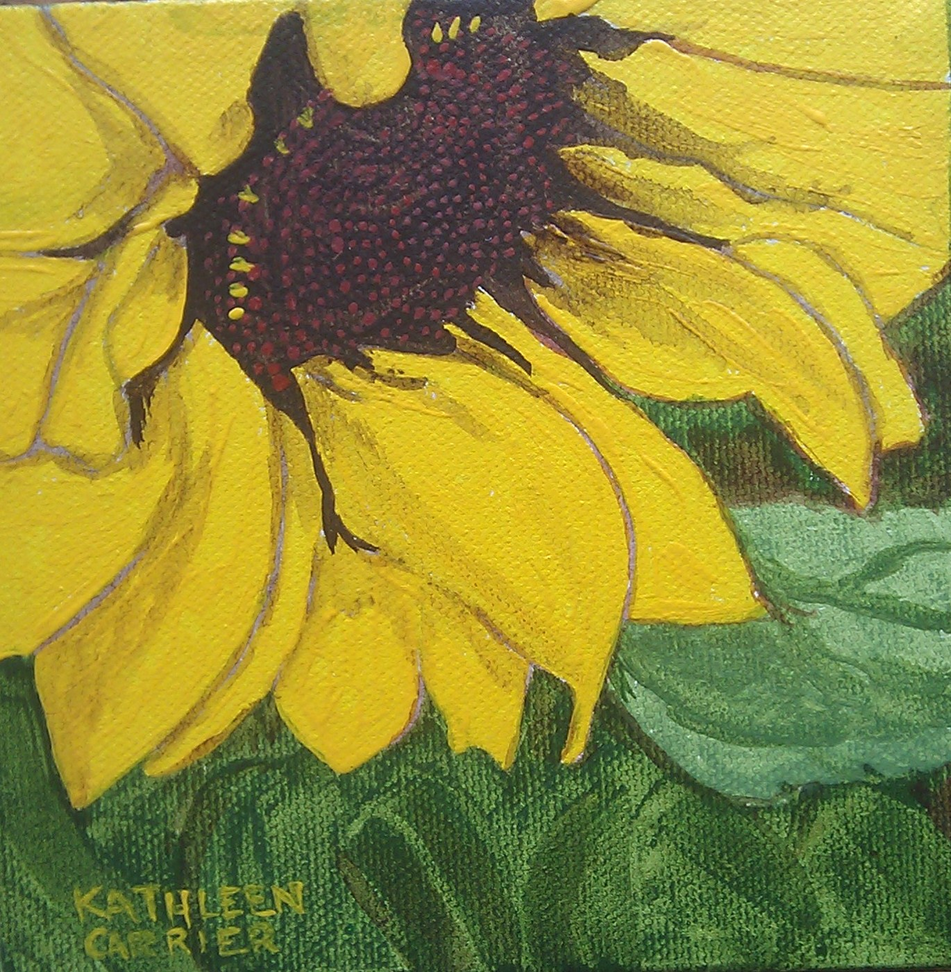 """Sunflower"" original fine art by Kathleen Carrier"