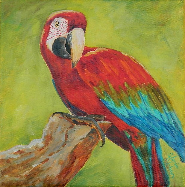"""Scarlet Macaw"" original fine art by Gloria Urban"