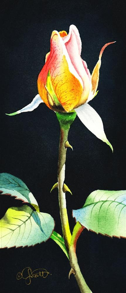 """Rosebud & New Instructional Video"" original fine art by Jacqueline Gnott, whs"