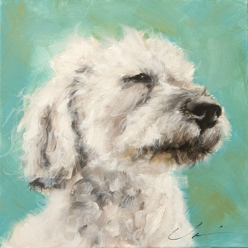 """Fuzz"" original fine art by Clair Hartmann"