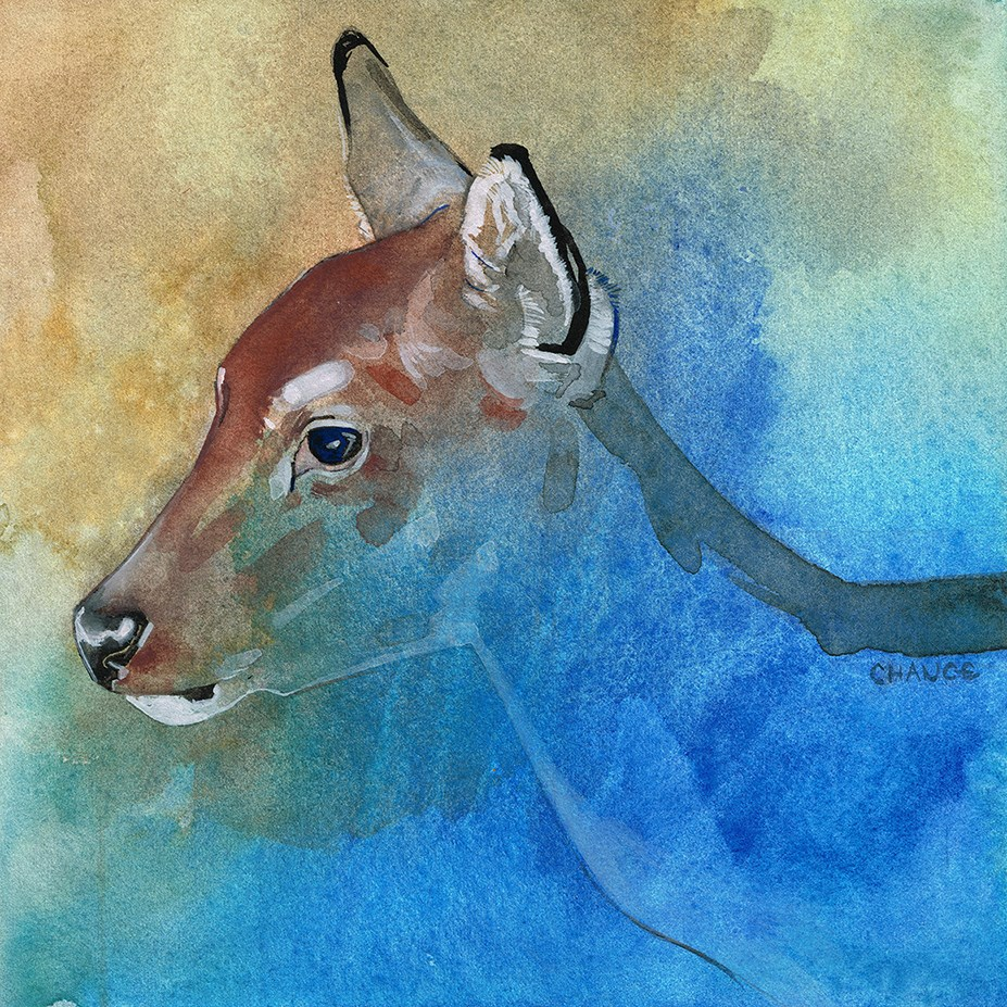 """No. 10 Deer"" original fine art by Annabel Chance"