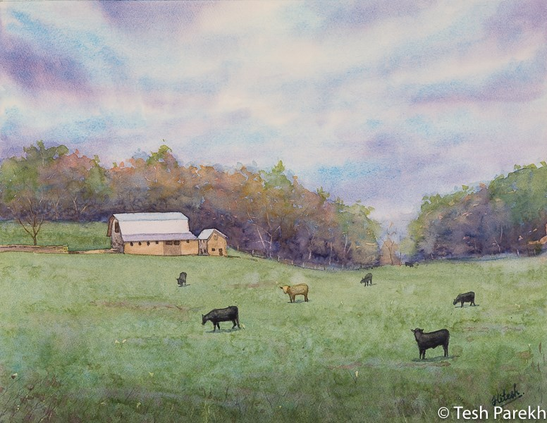 """Galax VA Morning"" original fine art by Tesh Parekh"