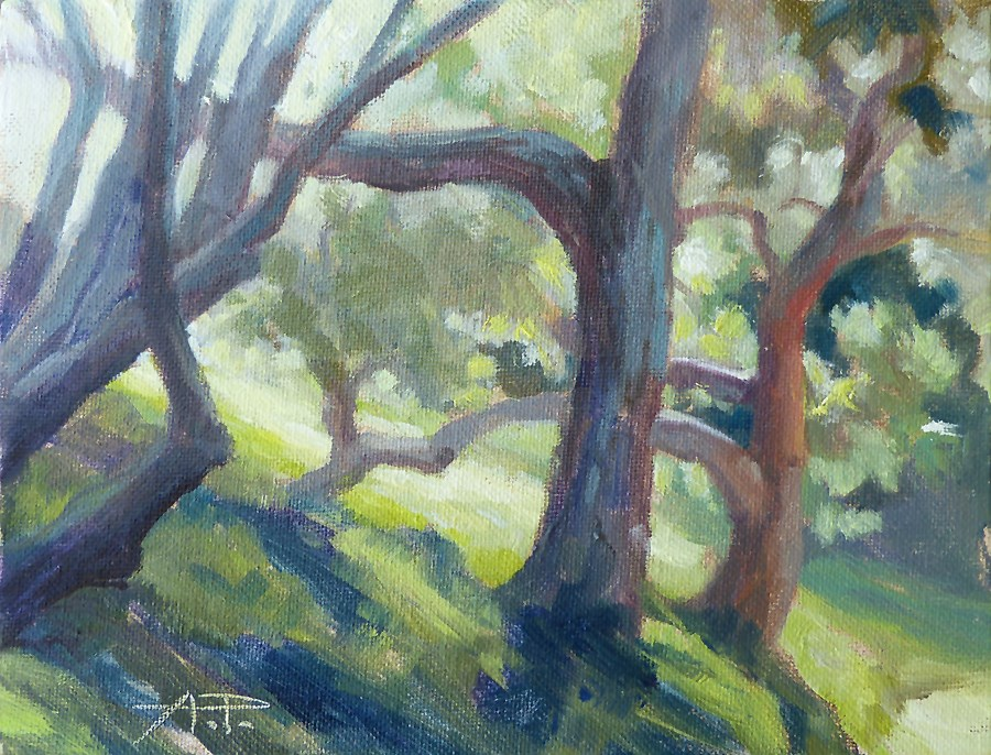 """Day 14 - Sunlit Pines"" original fine art by Anette Power"
