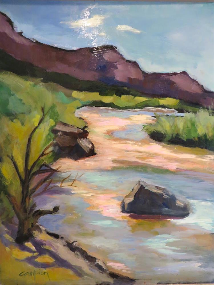 """698 The Rio Grande River at Arroyo Hondo"" original fine art by Diane Campion"