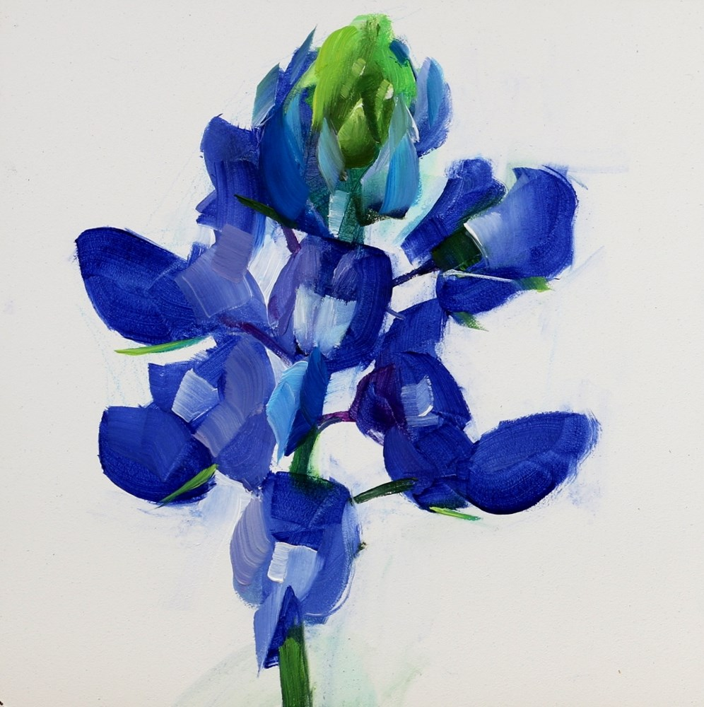 """""Blue Bonnet 2014"" original fine art by Qiang Huang"