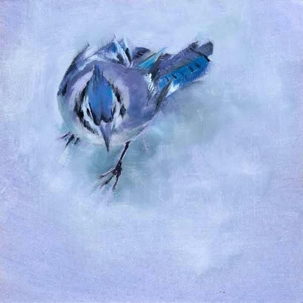 """Fifty Shades of Jay"" original fine art by Brenda Ferguson"