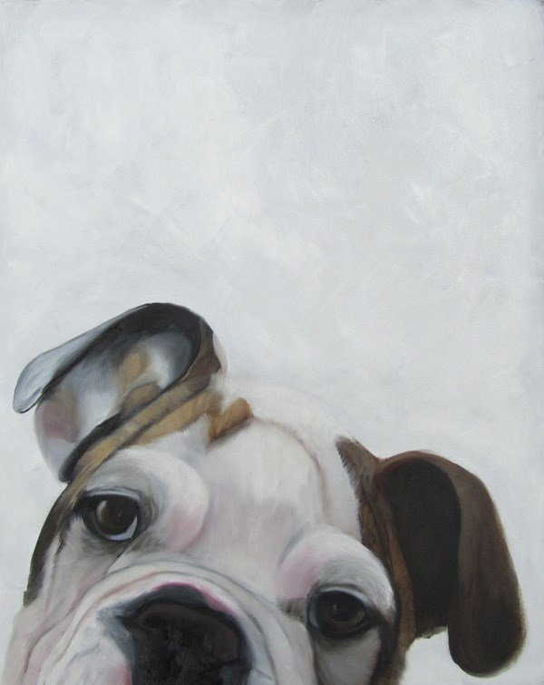 """""""Charlie the Boxer"""" original fine art by Amy Hillenbrand"""
