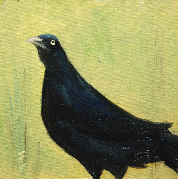 """Black Bird"" original fine art by Jane Frederick"