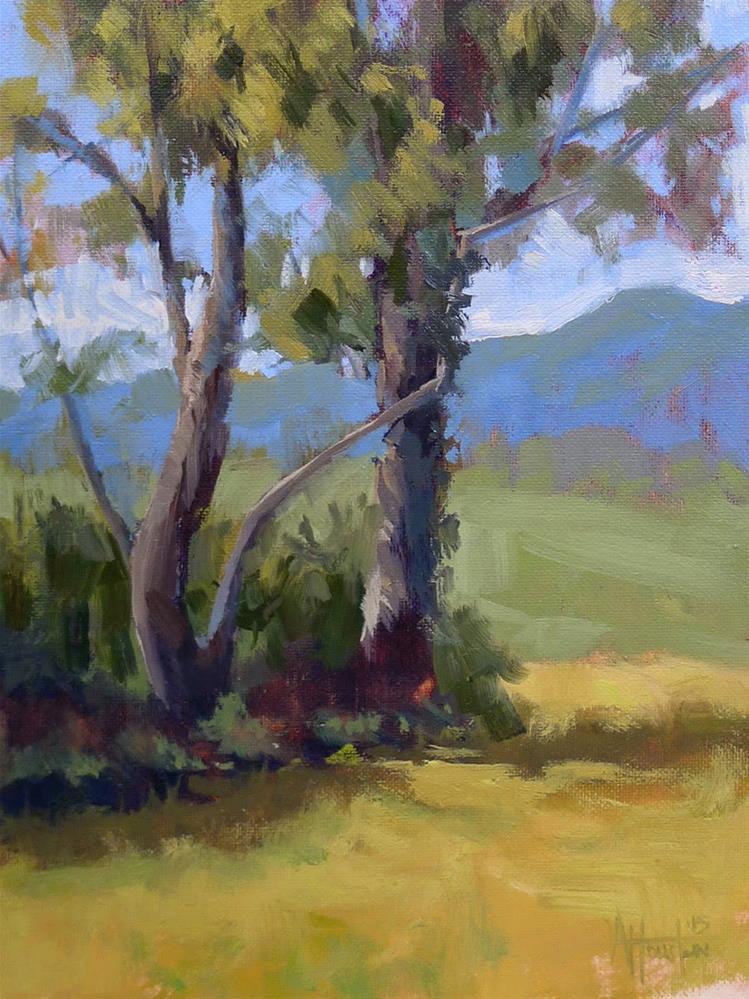 """""""Brasstown Valley"""" original fine art by Adam Houston"""