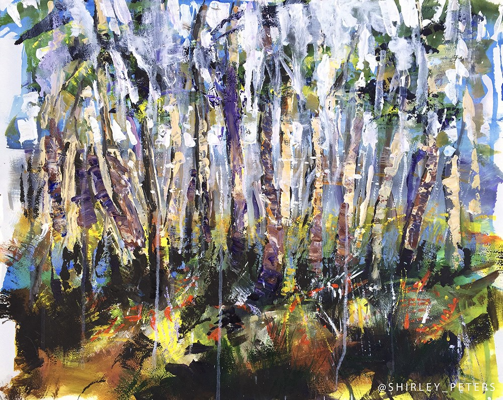 """Ti Tree Snake Gully"" original fine art by Shirley Peters"