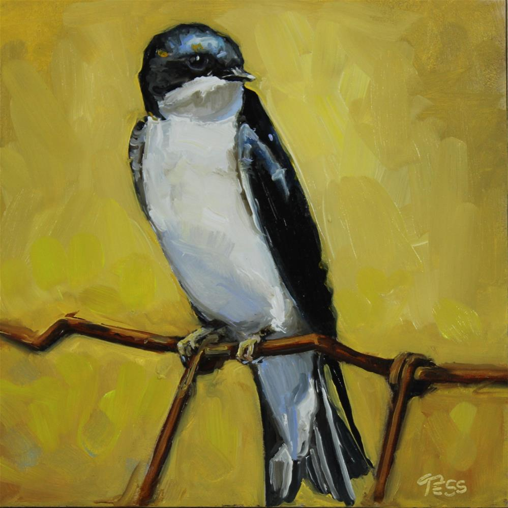 """Day 11- Swallow"" original fine art by Tess Lehman"