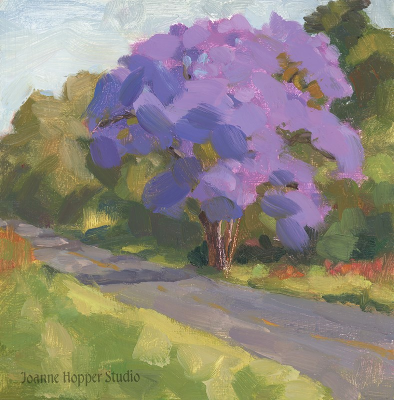 """First Jacaranda"" original fine art by Joanne Hopper"
