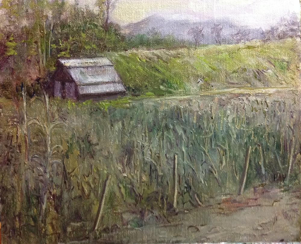 """Darnell Farms Bryson City : the Maze"" original fine art by barbara yongue"