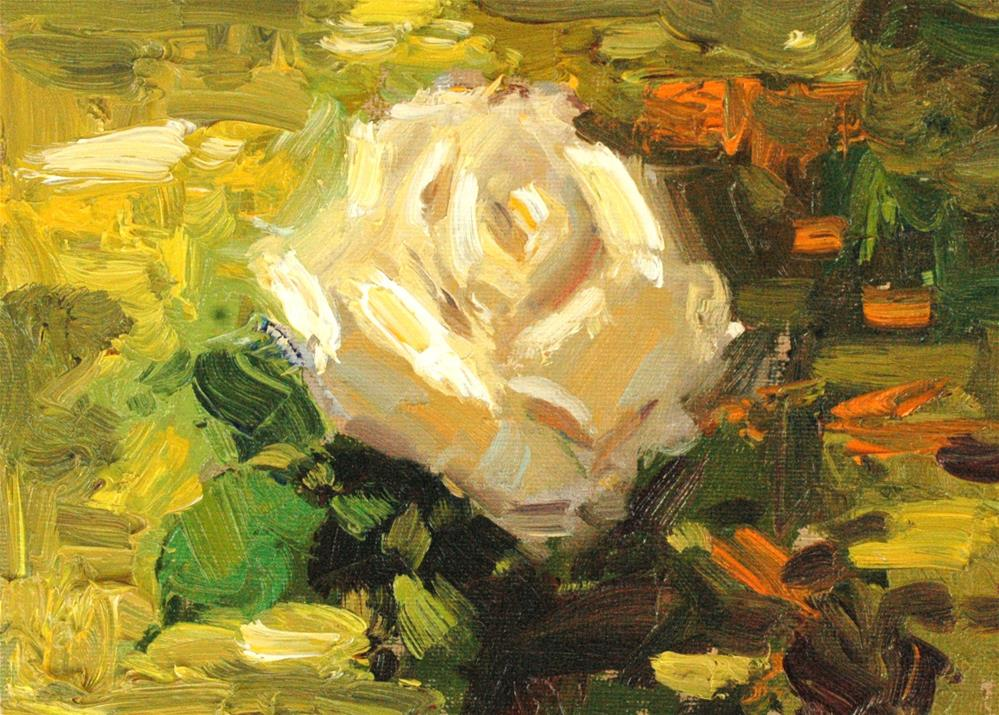 """Sunny Rose"" original fine art by Michael Clark"
