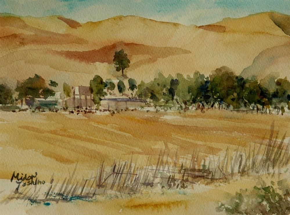"""A goats farm near Al Ain Camel racetrack"" original fine art by Midori Yoshino"