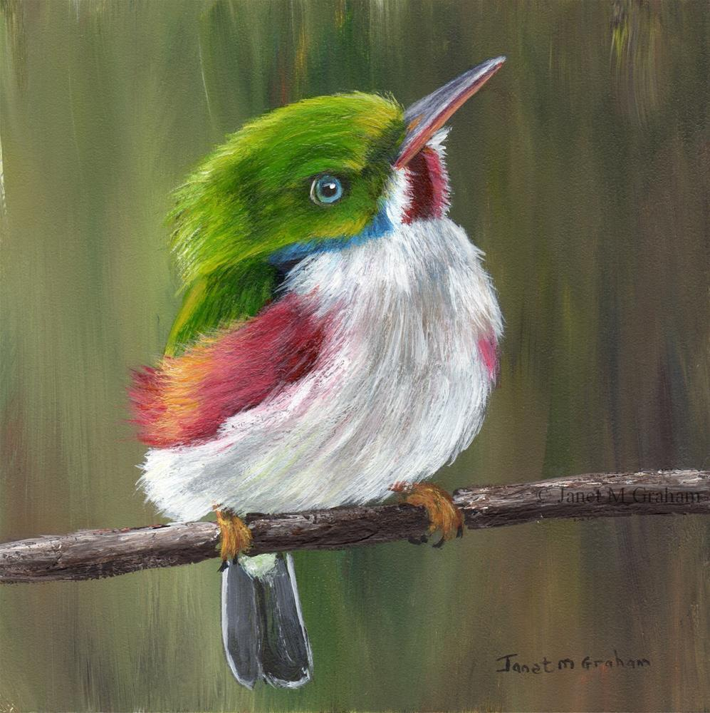 """Cuban Tody"" original fine art by Janet Graham"