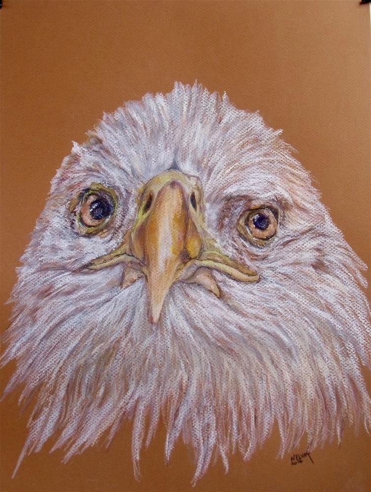 """The Eagle Eye"" original fine art by Nelvia McGrath"