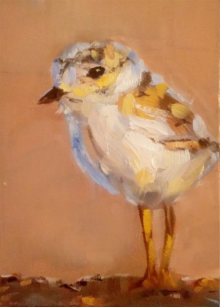"""""""Plover Baby"""" original fine art by Gary Bruton"""