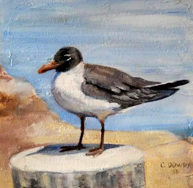 """Gull in Bright Sun"" original fine art by Christina Dowdy"