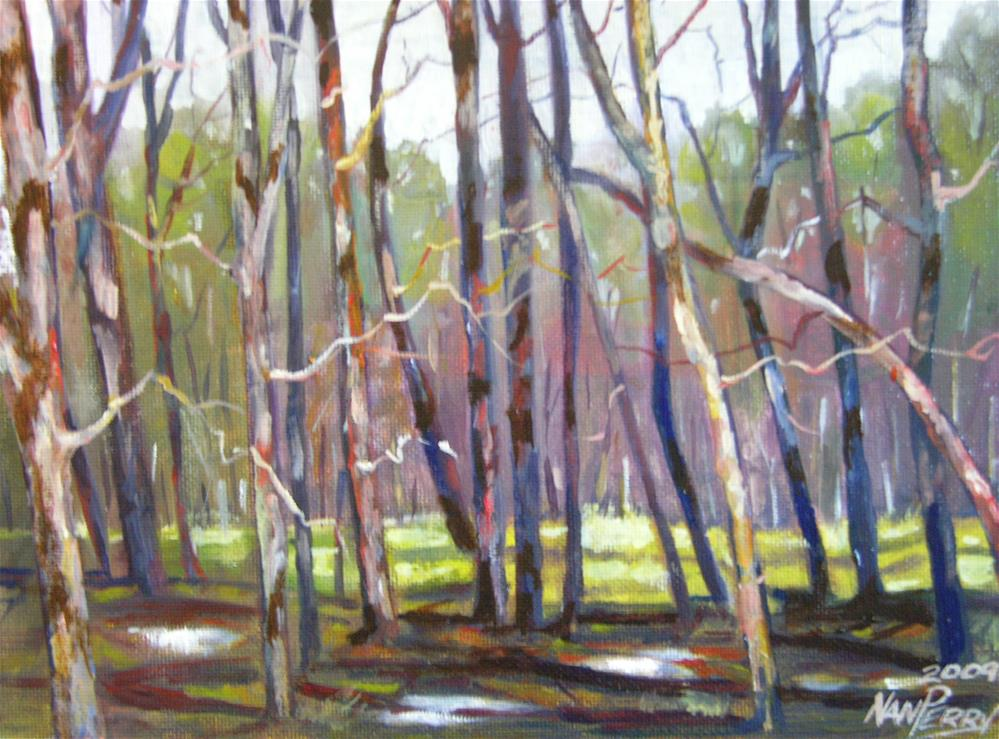 """Light on Tree Trunks"" original fine art by Nan Perry"