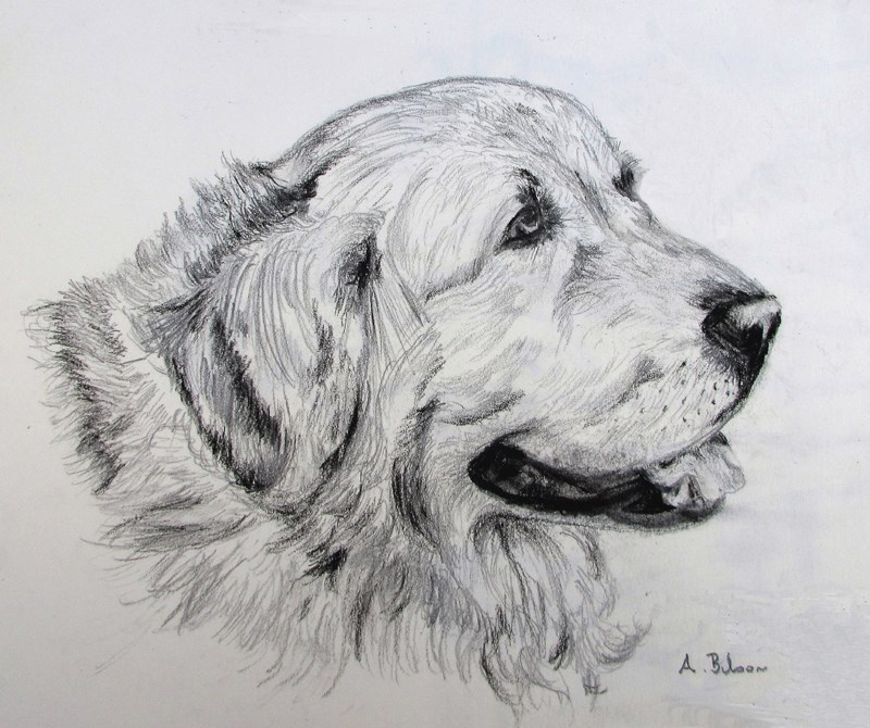 """Faithful Companion"" original fine art by Amanda Bilson"