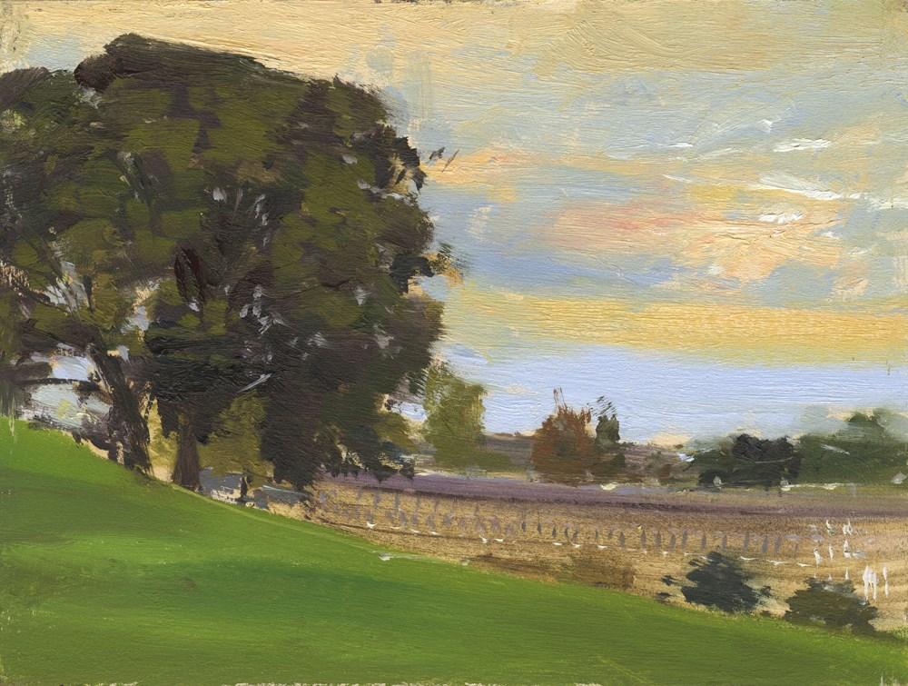 """""""Evenlight from Golf Course, Bath"""" original fine art by Adebanji Alade"""