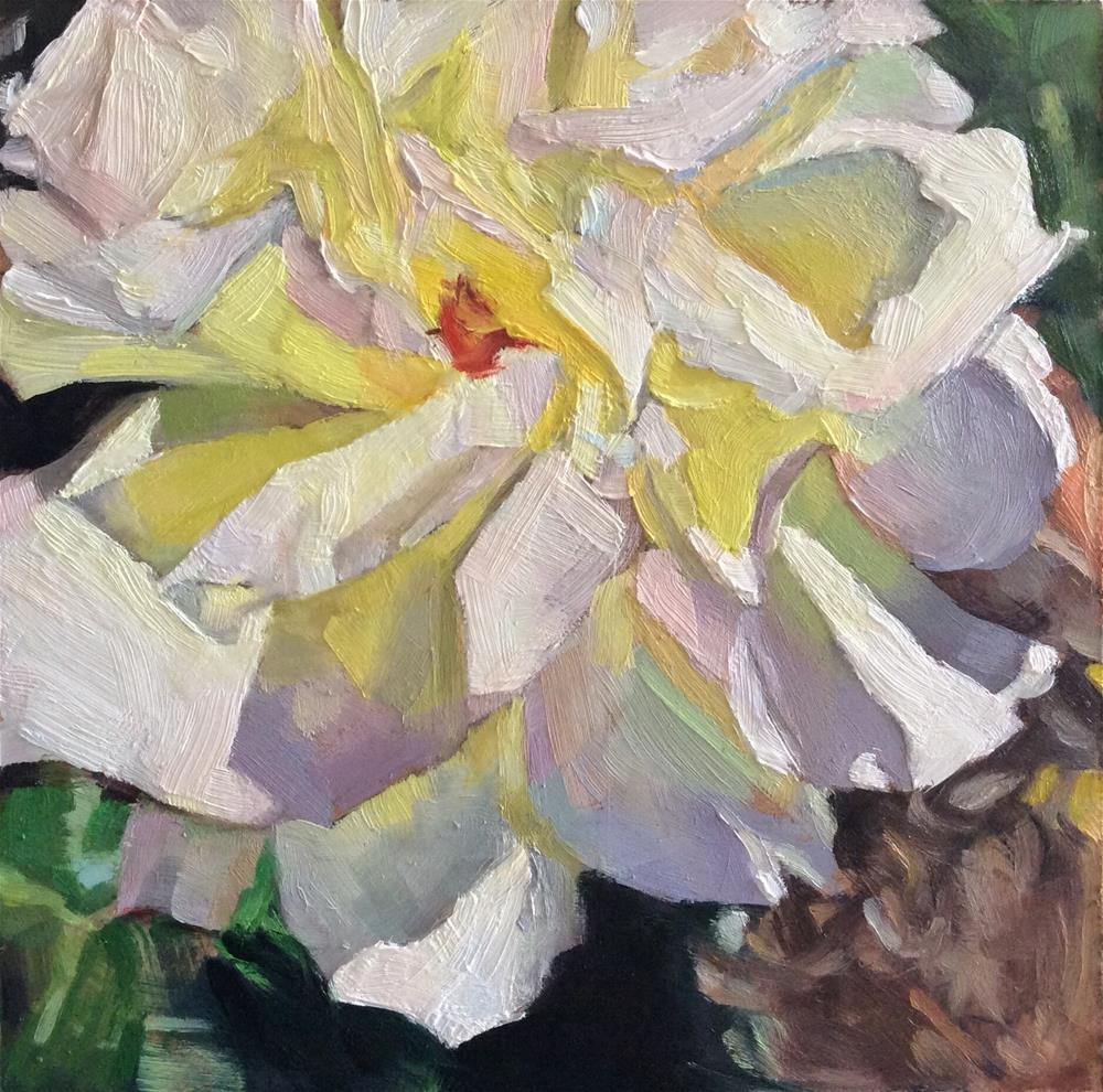 """White Rose"" original fine art by Paula Howson-Green"