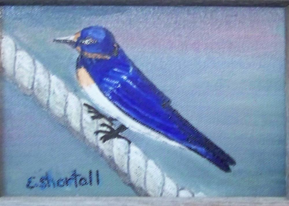 """Swallow on Roap"" original fine art by Elaine Shortall"