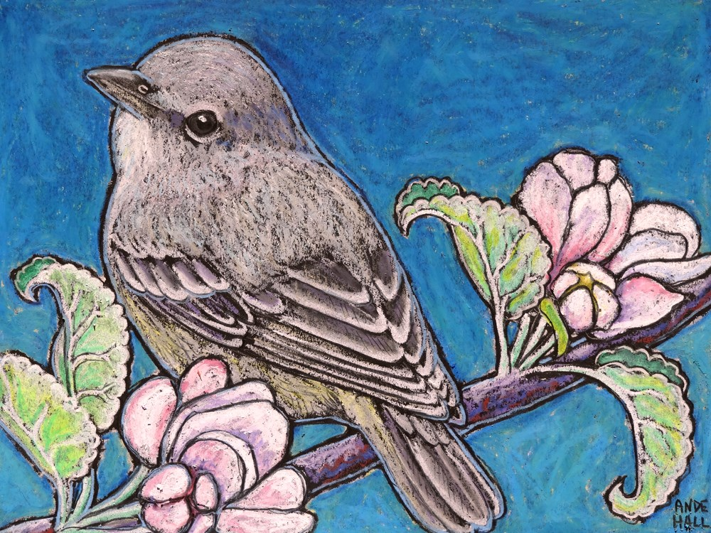 """Lucy's Warbler"" original fine art by Ande Hall"