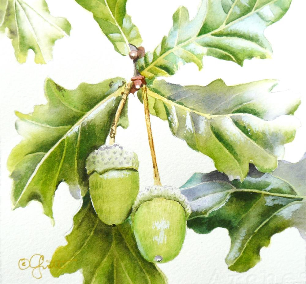 """Acorns"" original fine art by Jacqueline Gnott, whs"