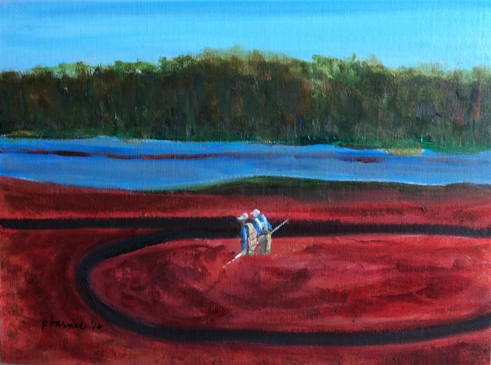 """Harvesting  Cranberries"" original fine art by Patty Barnes"