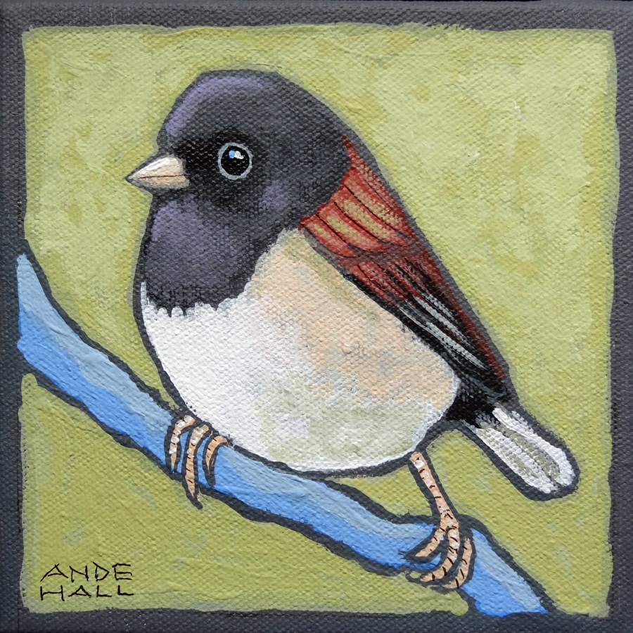"""Just a Junco"" original fine art by Ande Hall"