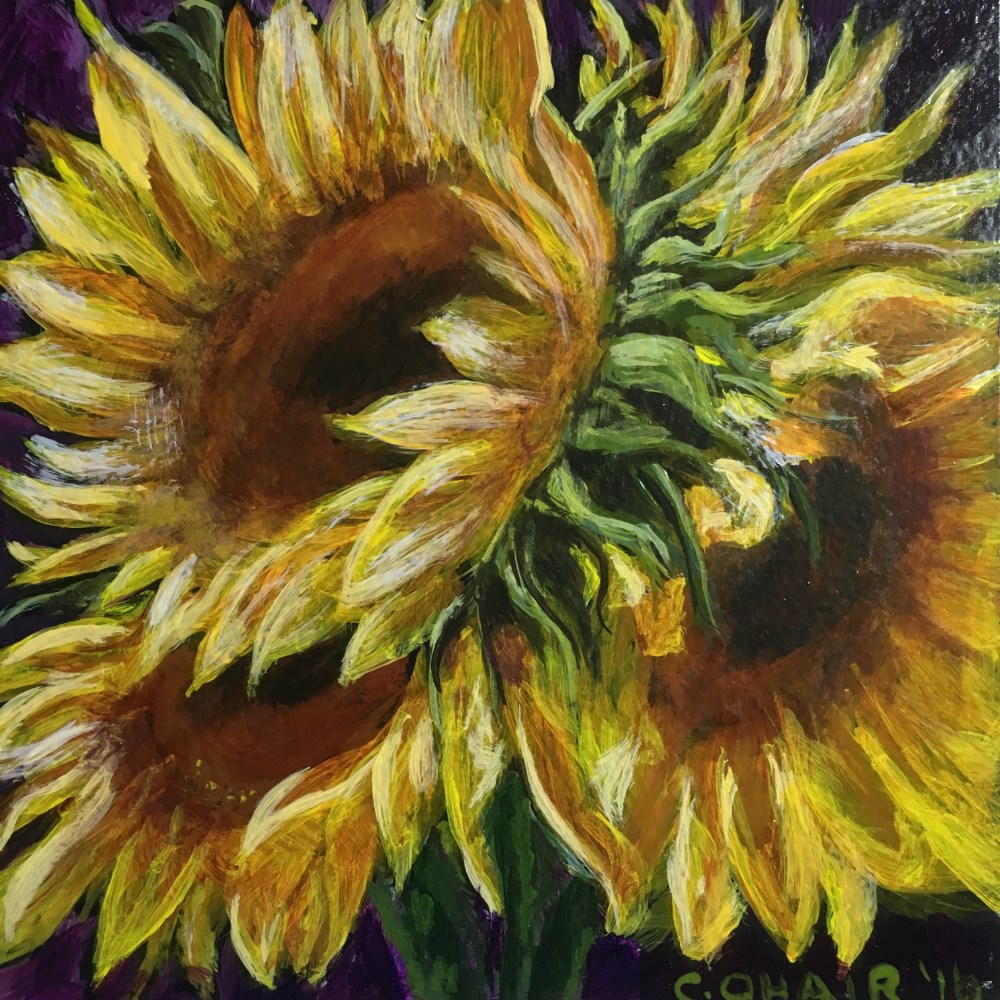 """Sunflower - SOLD"" original fine art by Colleen OHair"