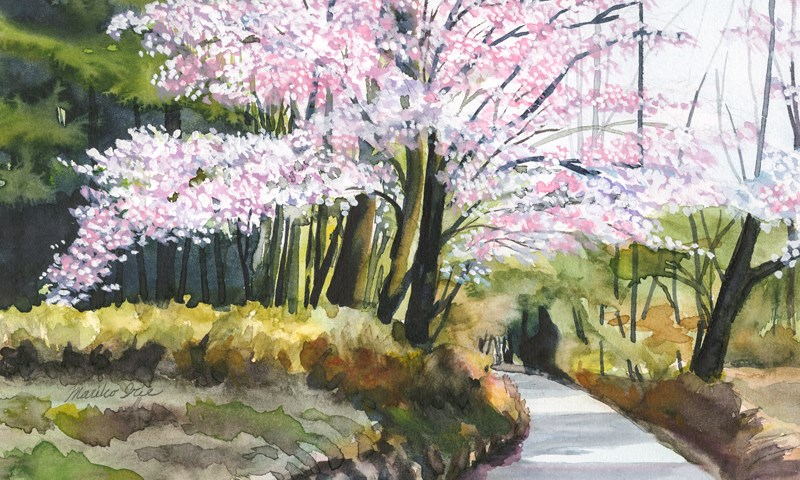 """Cherry Blossoms by the Shrine"" original fine art by Mariko Irie"