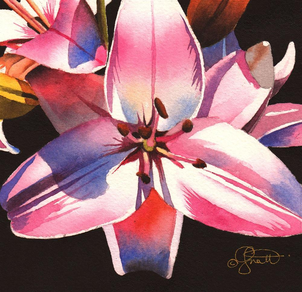 """Pink Asiatic Lily"" original fine art by Jacqueline Gnott, whs"