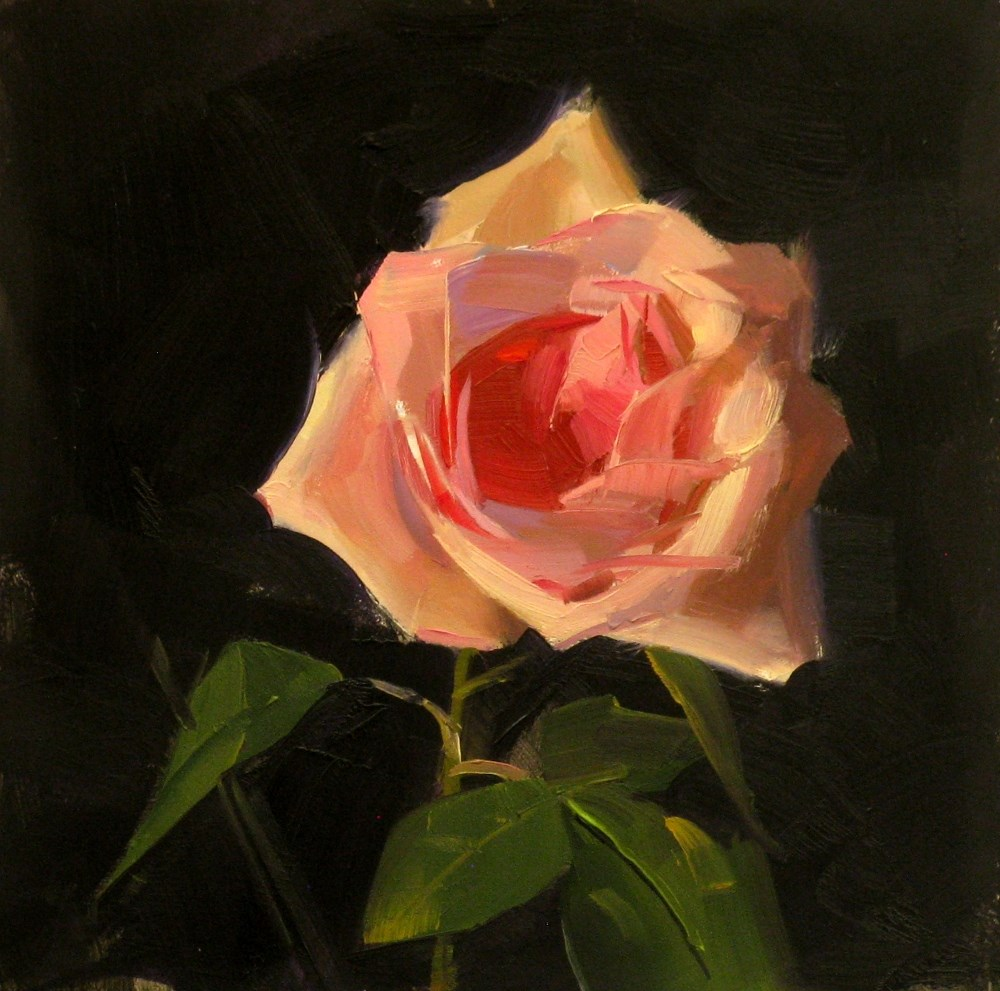 """Pink Rose Study 10"" original fine art by Qiang Huang"