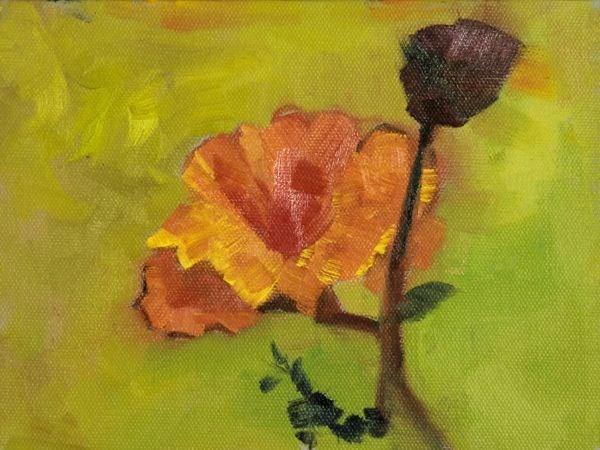 """Still Life Flower Oil Painting Single Poppy by Colorado Artist Susan Fowler"" original fine art by Susan Fowler"