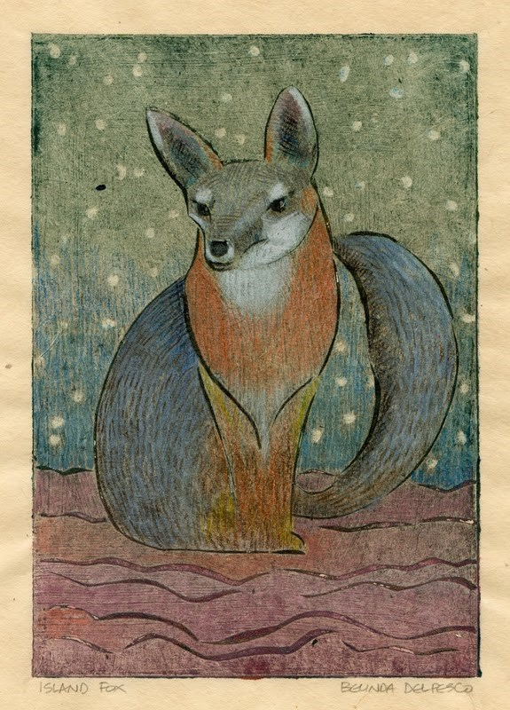 """Collagraph: Island Fox (after an encounter with one on Santa Cruz Island)"" original fine art by Belinda Del Pesco"
