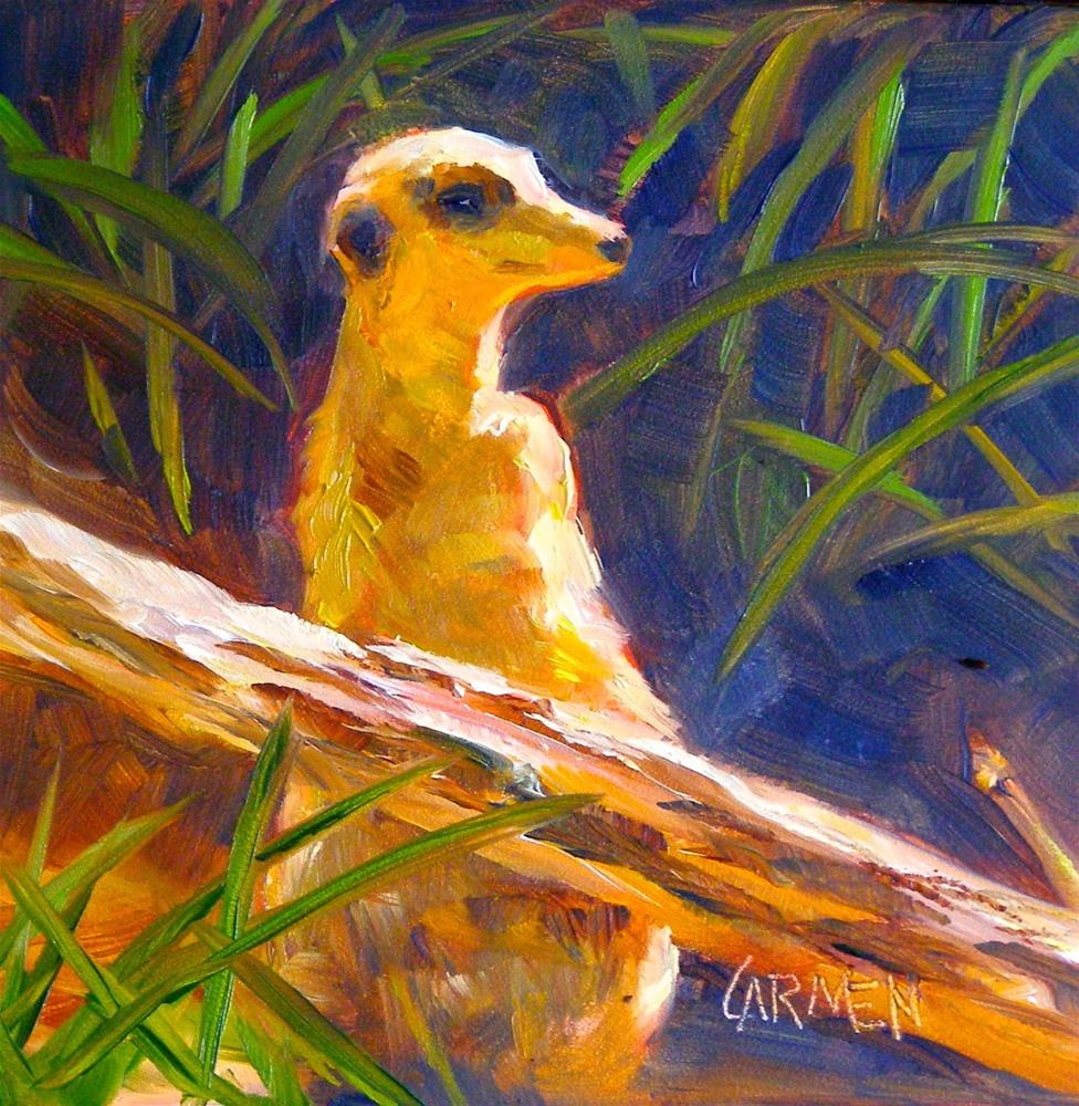 """Meerkat Lookout, 6x6 Original Oil Painting"" original fine art by Carmen Beecher"