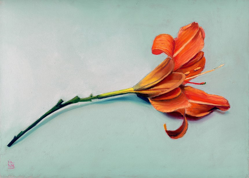 """orange lily pastel painting"" original fine art by Ria Hills"